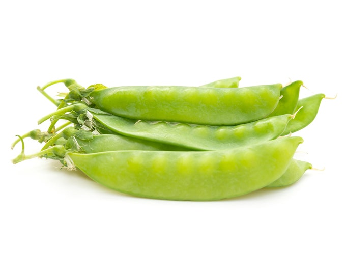 Dwarf Grey Sugar Pea - Heirloom 10 seeds