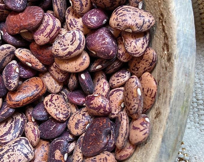 Jackson Wonder Lima Bean - RARE heirloom 15 seeds