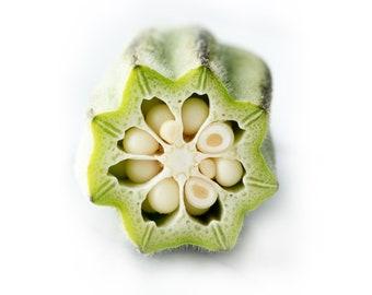 Star of David Okra - heirloom 10 seeds