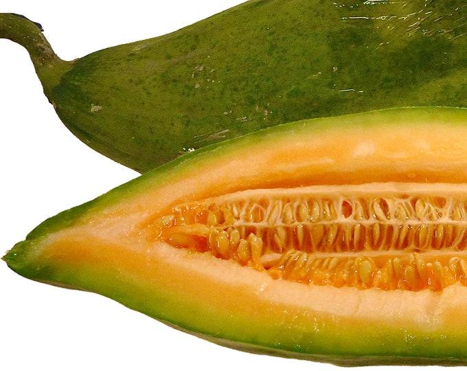 Banana Melon Cantaloupe - RARE heirloom 10 seeds
