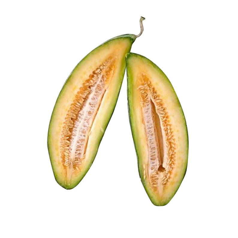 Banana Melon Cantaloupe RARE heirloom 10 seeds