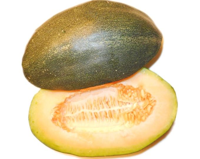 Green Dulcimer Cantaloupe - RARE heirloom 10 seeds
