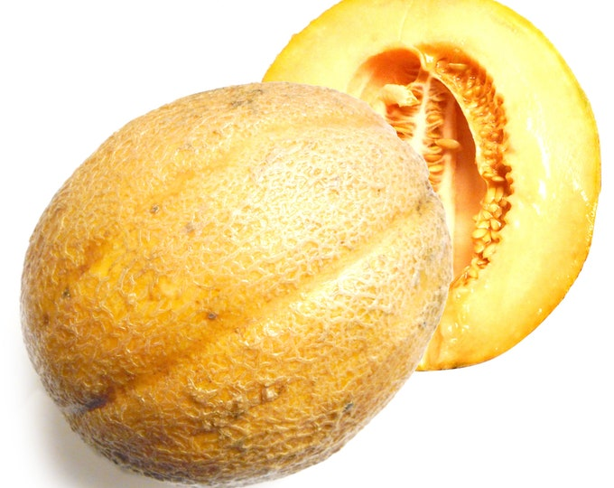 Mumbo Jumbo Cantaloupe - VERY RARE Heirloom 20 seeds