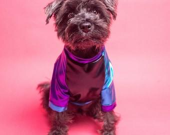 Blue, Black, Purple, Shiny Raglan Shirt | dog clothing | dog outwear | dog fashion | Sparkly Dog Apparel