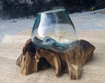 Glass wood terrarium, Glass vase on root wood, Large Terrarium Glass Vase Bowl on Root Wood Hand Blown Recycled Glass, Succulent Planter