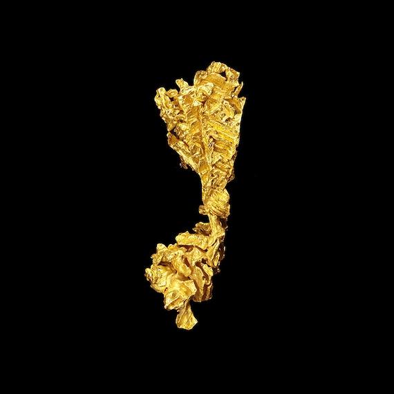 Gold (fine crystals) (3.18 grams) / Locality - Serra do Caldeirao claims, Pontes e Lacerda, Jauru District, Mato Grosso, Brazil