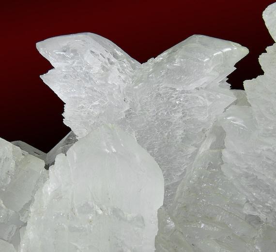 "Gypsum (var: ""Selenite"") (""fish-tail"" twins) / Locality - Naica Mine, Naica, Mun. de Saucillo, Chihuahua, Mexico"