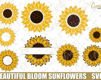Sunflower svg, Beautiful Bloom Sunflowers svg - Vector files - jpg, png, Sunflower Svg Bundle