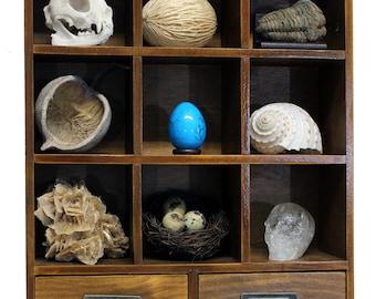 Cabinet of curiosity / Curiosity Box / Curiosity Cabinet / Curiosities and Oddities Vintage / Kuriositätenkabinett / Kuriositätenschrank I