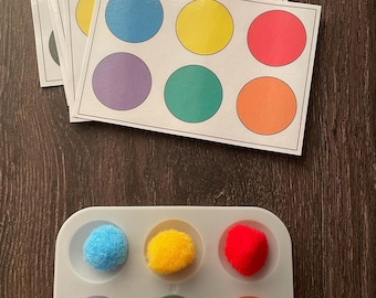 Pom Pom Grid Busy Bags - Toddler Busy Bags - Preschool - Fine Motor Activity - Color Matching - Tot School