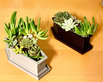 Halloween Coffin Planter with Succulents, Scary, Gothic Decor for Halloween