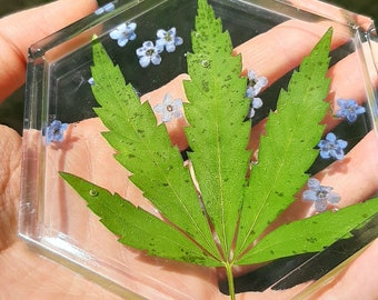 Forget-Me-Not 420 Trinket Tray