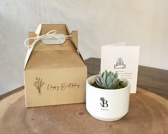 Personalized Birthday Gift Box | Succulent & Card Included | Birthday Gift, Personalized Gift, Friend's Birthday