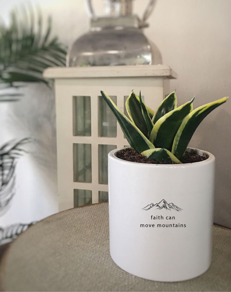 Sponsor Gift Sansevieria /& Air Purifying Plant Friends Birthday Custom Succulent Pot Mini Cylinder Personalized Planter