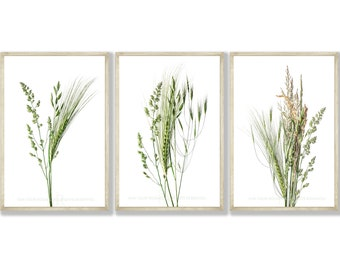 Set of 3 Wild Grass Prints - 2 Print Sizes A3 & A4, Singles Available, FREE UK Delivery and Fast Shipping