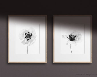 Set of 2 Black & White Poppy Prints, also available as singles -  FREE UK DELIVERY, 2 Print Sizes A3 and A4, Super Fast Shipping