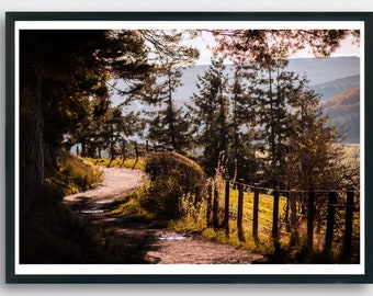 Woodland walk in Autumn in the Scottish highlands.  Printable Art.  Highland, Scotland. Country path in fall.
