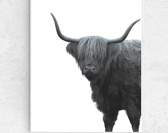 Highland cow, Hairy Coo, black and white PRINTABLE wall art