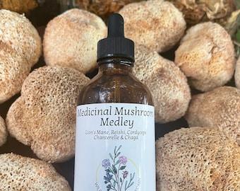 Medicinal Mushroom Medley Tincture
