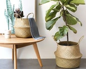 Woven Natural Seagrass Storage Basket Natural Seagrass Woven Storage Basket Pot Garden Flower Vase Hanging Wicker Basket Bellied Baskets