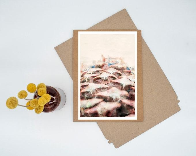 Featured listing image: Pinecone Portrait Digital Watercolor Minimalist Print Wall Art