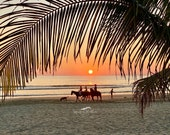 Sunset Riders on the Beach: Blank (or add your own greeting for free) Photo Greeting Card; order single or boxed gift sets; free delivery