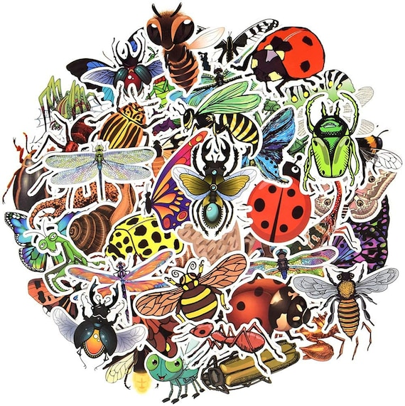 Insect vinyl stickers bugs stickers pack butterfly waterproof nature stickers beetles decals iPad stickers