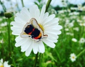 Bumble Bee Wooden Pin Badge