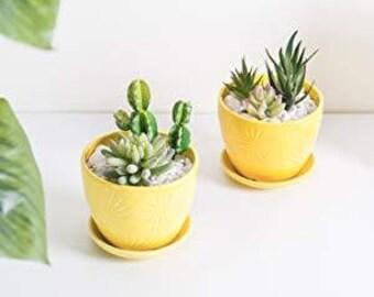 Yellowmustard concrete planter