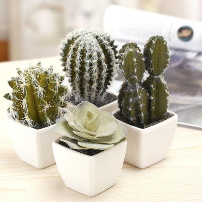 Set of 4 Mini Assorted Artificial Cactus Plants