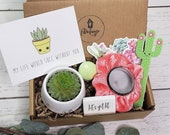 My Life Would Succ Without You Care Package Custom Gift Quarantine Succs Gift For Her Best Friend Gift Succulent FREE SHIPPING