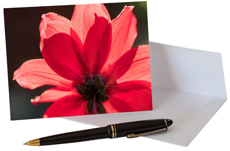 Mother's Day Notecard Gift Pack with Envelopes image 0