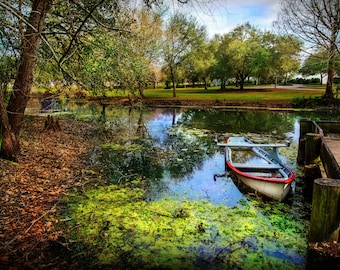 Abandoned boat in the bayous of Vermillonville, Louisiana USA. Contemporary artistic color photo. Professional printing.