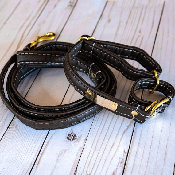 Personalized Leather Alternative Matching Dog Leash & Martingale Collar Set With Nameplates