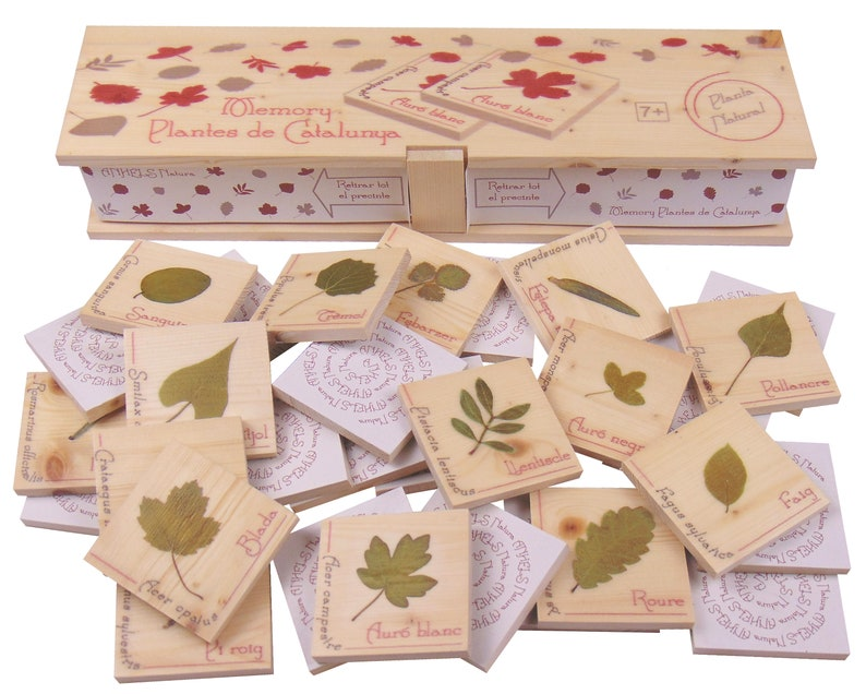 Memory Plantes de Catalunya. Didactic game to know the plants. image 0