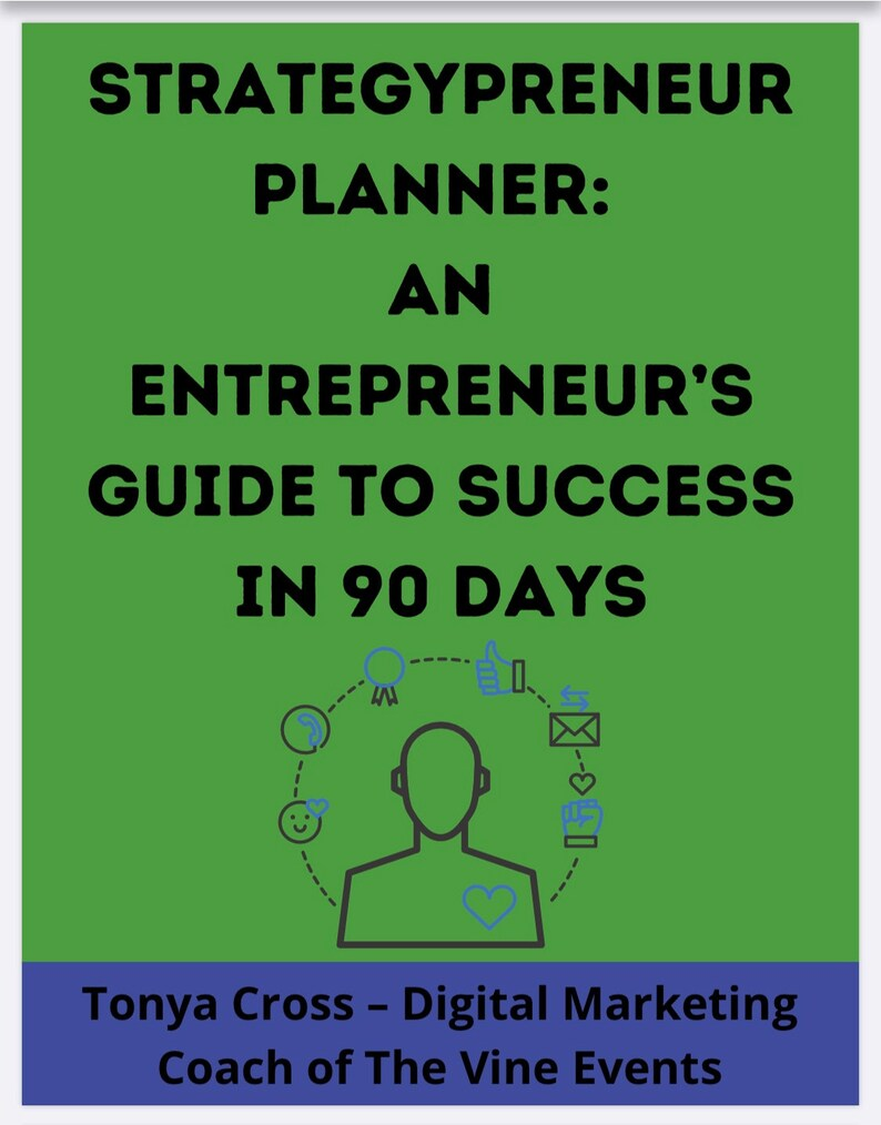 Strategypreneur Planner: An Entrepreneur's Guide to image 0