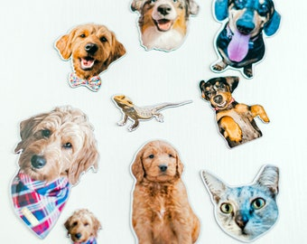 Custom Pet Magnets   Cute Animal Magnets   Decorative Magnets   Dog Cat Lover Gifts   Fridge Magnet   Collectors Magnet Pet Item