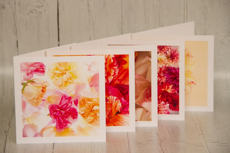 Pack of 5 blank greetings cards Bright Colours Floral