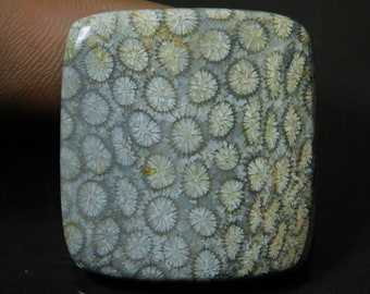 Rectangular Fossil Coral Cabochon 27.56mm Black and Grey