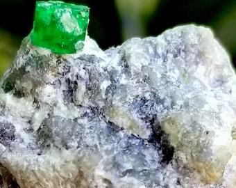 C16 Natural Emerald Crystal Specimen From Sawat Pakistan 187gr 2.8 inch