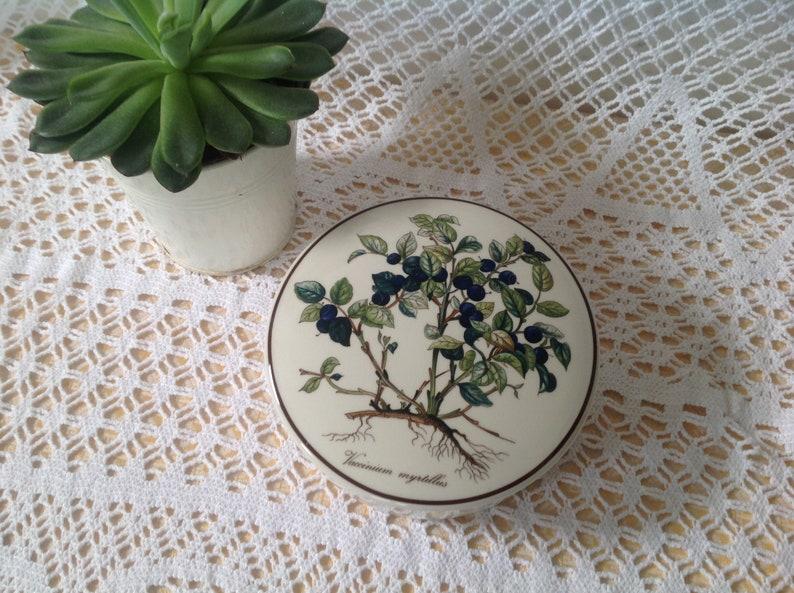 Candy  Porcelain Jewelry Box  Villeroy Boch  Vaccinium myrtillus