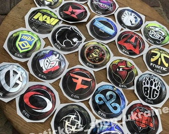 Natus Vincere Stickers from CS GO in real life  NaVi  Set NaVi Global Offensive decal  RMR 2020  Sticker  Decal