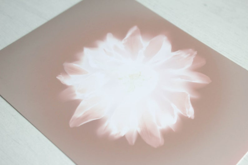 Handmade botanical wall art Flower lumen print One of kind
