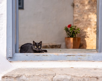 Stray Black Cat Napping in a Window on the Enchanting Greek Island of Hydra, High Resolution Fine Art Photo for download and printing.