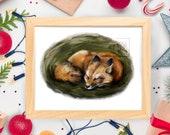 Sleeping Autumn Fox - Red Fox Wildlife - Art Print - 5x7 or 8x10 Print