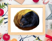 Sleeping Black Bear - Wildlife Nature Woods Forest Animal - Art Print - 5x7 or 8x10 Print
