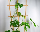 36 Jute Twine Wrapped Bamboo Ladder Style Indoor Plant Trellis