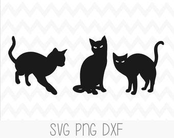 Black Cats Svg Etsy