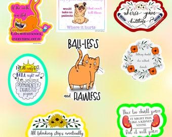 Vet Tech Stickers | Vet Med Stickers | Vet Med Humor | Funny Veterinary Stickers | Cheeky Vet Tech Stickers | Vet Tech Humor