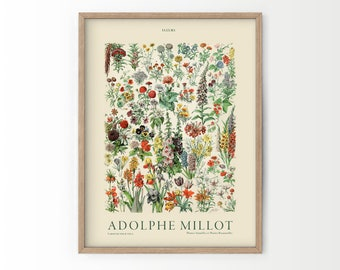 Flower Print, Adolphe Millot Poster, Vintage Flower Poster, Botanical Wall Art, Vintage Plants, Gift Idea